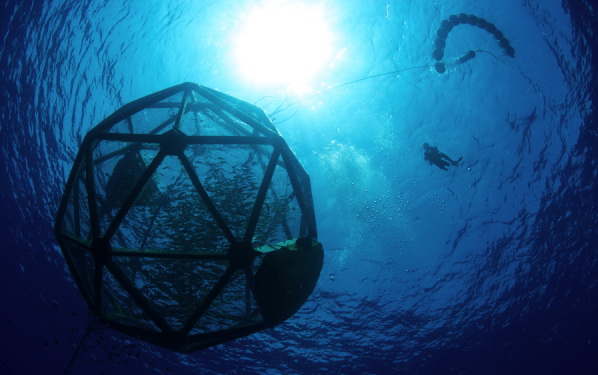 Geodesic Domes For Deep Sea Fish Farming
